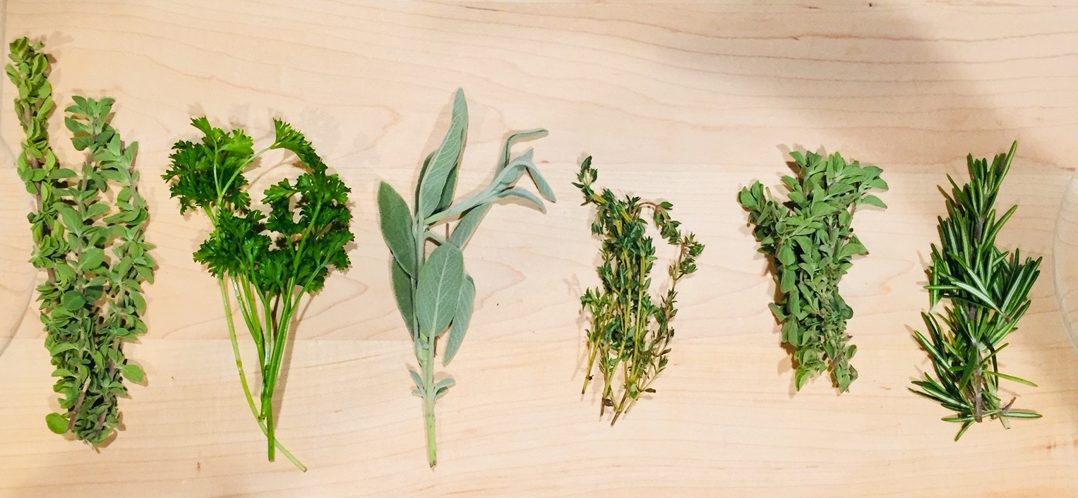 The 6 Essential Herbs of Fall